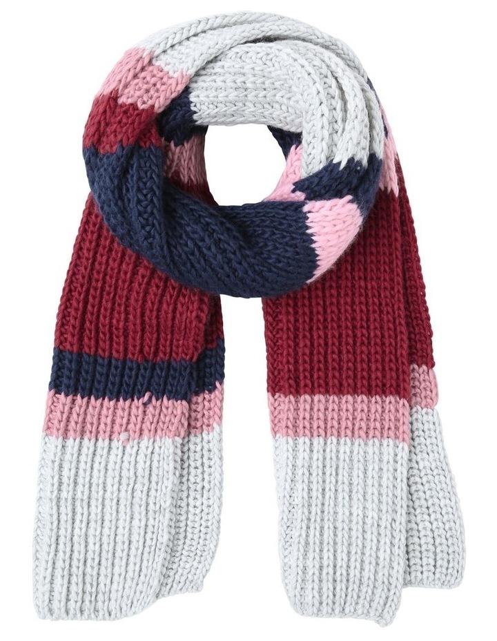 Stripe Knit Winter Scarf image 1