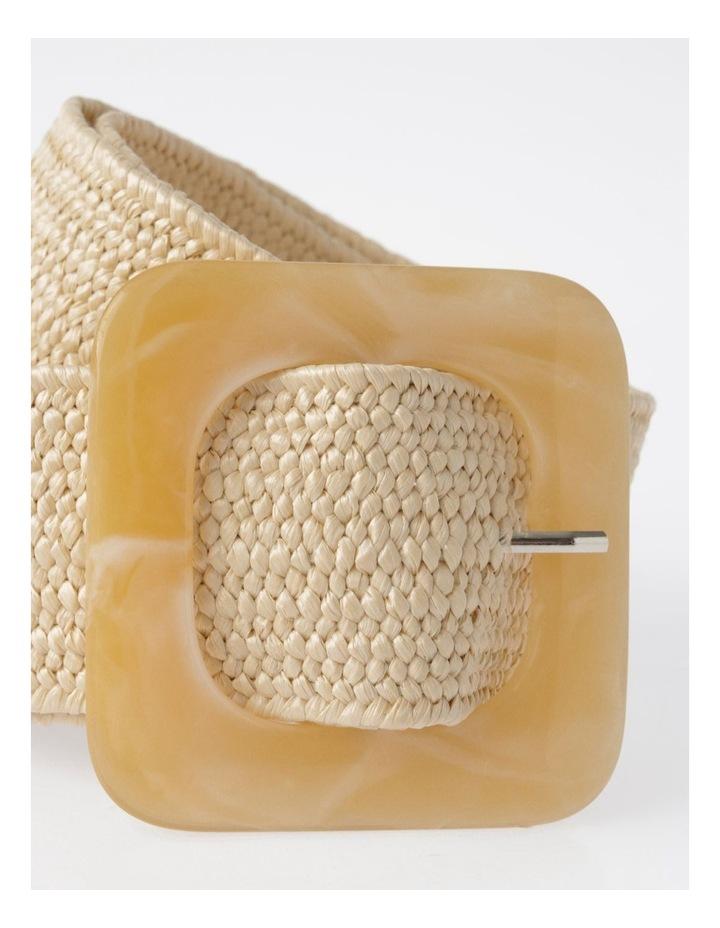 FBBT20647-031 Acrylic Buckle Belt image 2