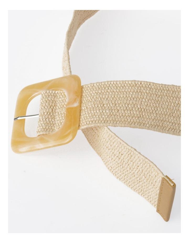 FBBT20647-031 Acrylic Buckle Belt image 3