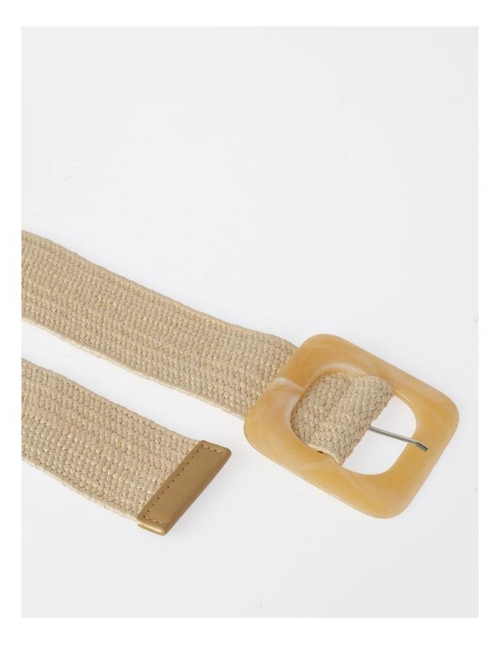 FBBT20647-031 Acrylic Buckle Belt image 4