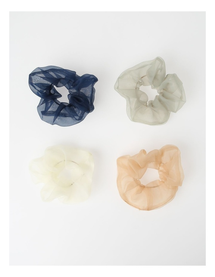 Sheer Scrunchie Hair Accessory FBPT205P3-031 image 1