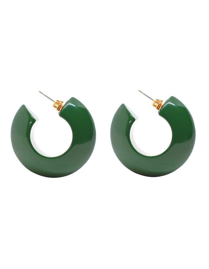 Argento Resin Hoop Earrings image 1