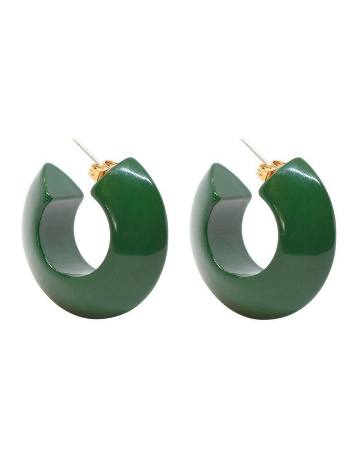 Argento Resin Hoop Earrings image 2