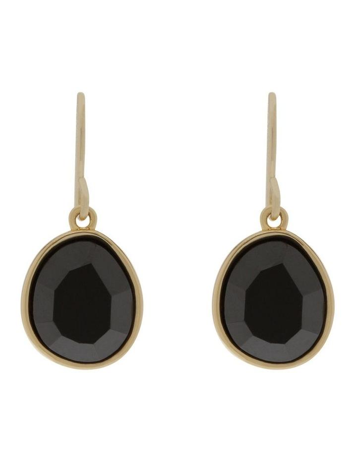 Semi Precious Drop Hook Earrings image 1