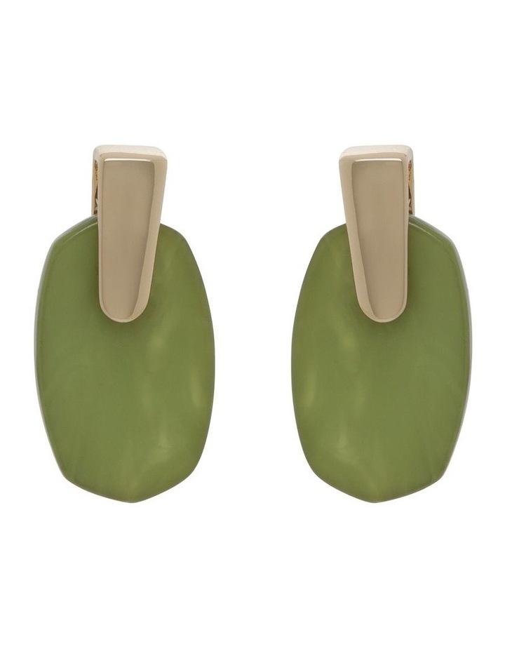 Acetate Drop Earrings image 1