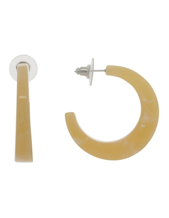 Acrylic Semi Hoop Earrings image 1