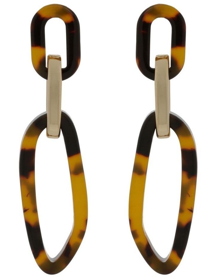Acrylic & Metal Drop Earrings image 1