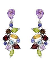 Carolyn Roberts - Gemstone Earrings Multi