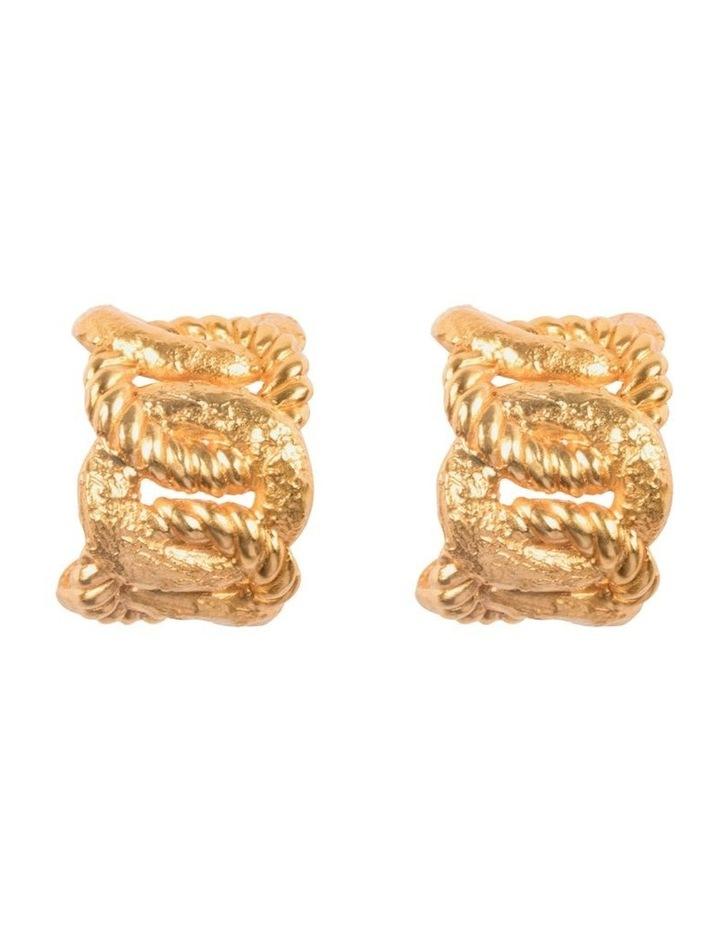 Carpe Deim Earrings image 1