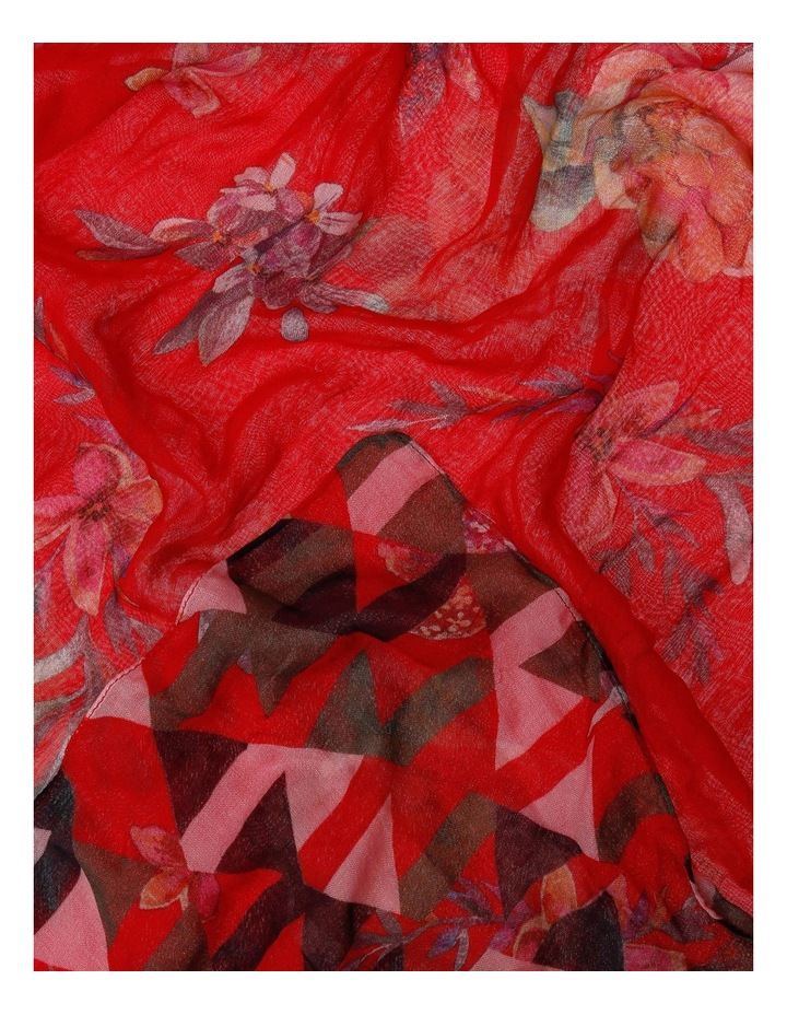 81331 Livigno- Harlequin image 2