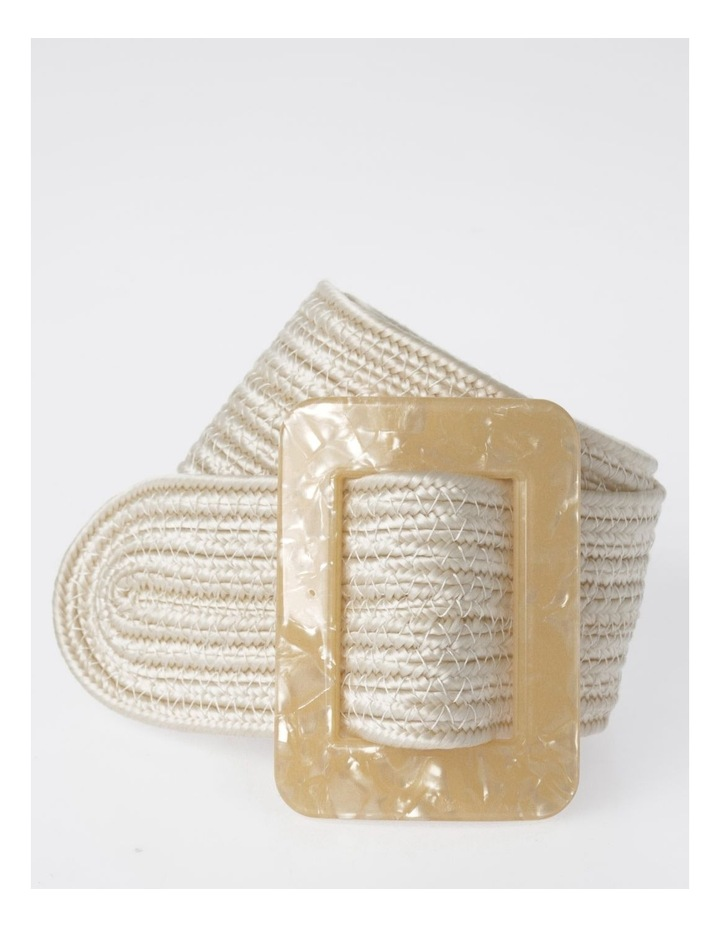 DTW19-359-60 Weave W/ Acrylic Buckle Belt image 1