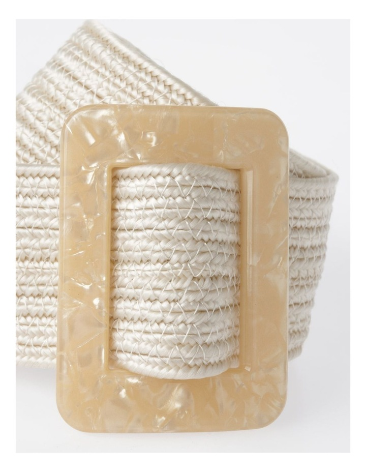 DTW19-359-60 Weave W/ Acrylic Buckle Belt image 2