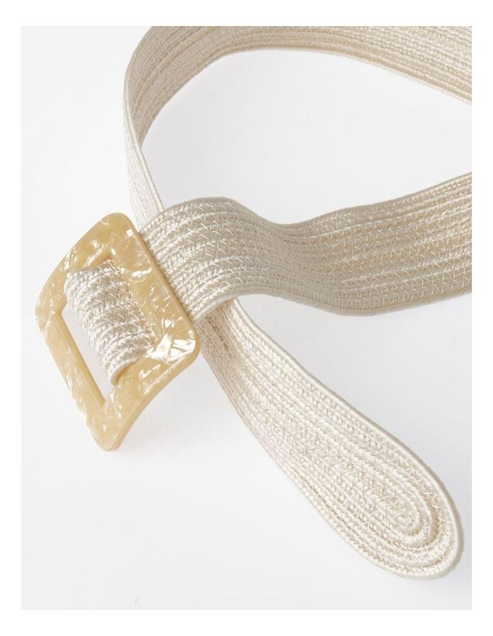 DTW19-359-60 Weave W/ Acrylic Buckle Belt image 3