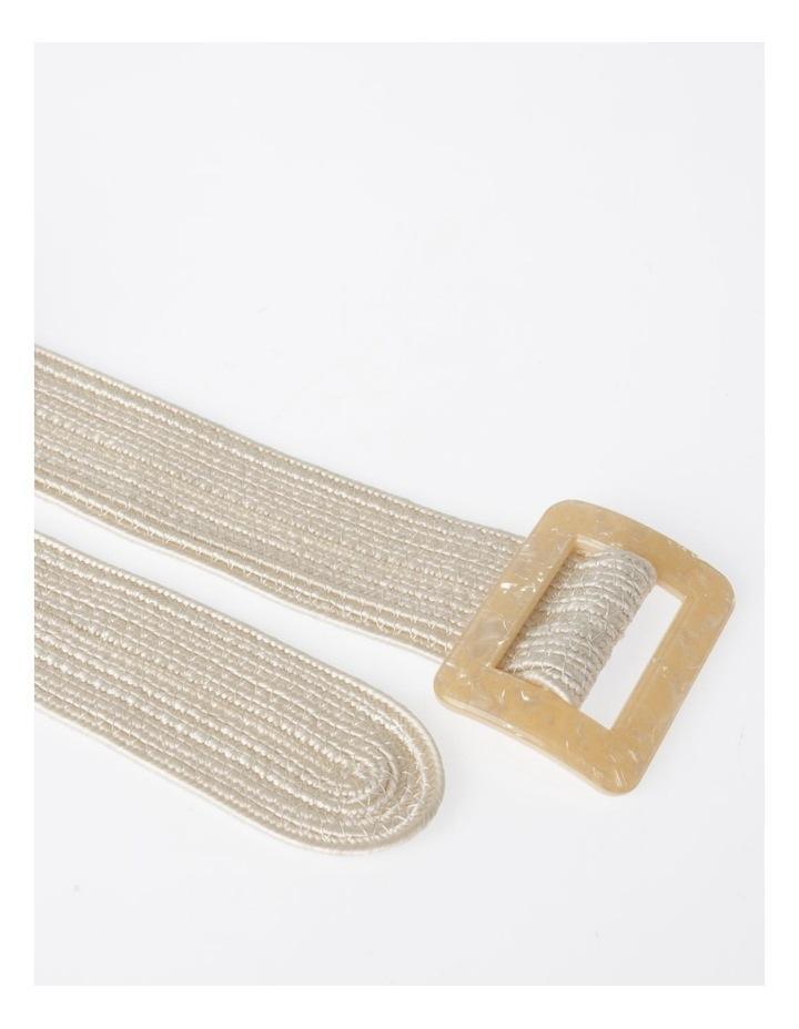 DTW19-359-60 Weave W/ Acrylic Buckle Belt image 4