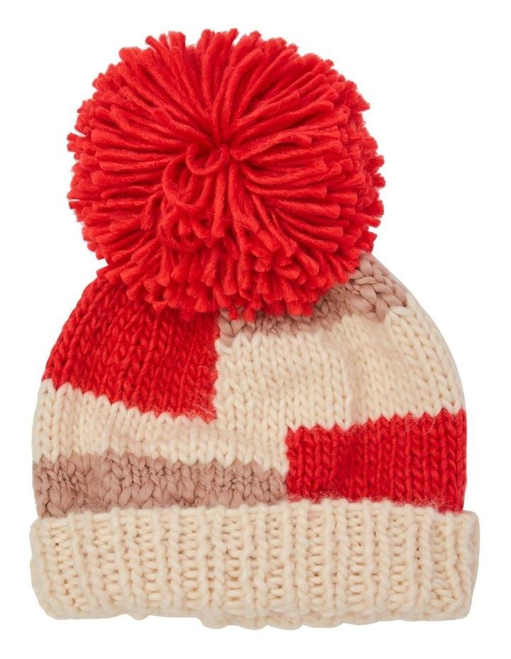 Brady Beanie  Winter Hats image 1
