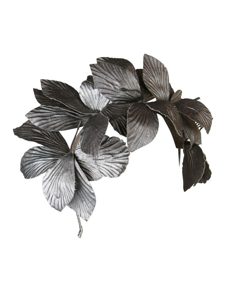 Big Leaves On Band image 3