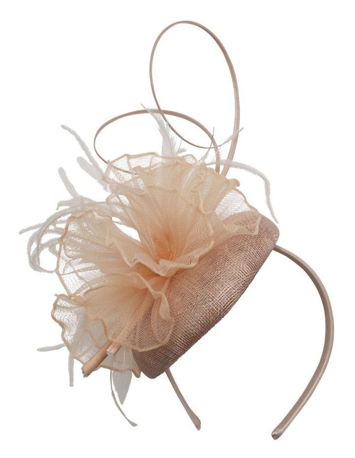 COL17 Organza Pleat Ruffle With Sticks image 1