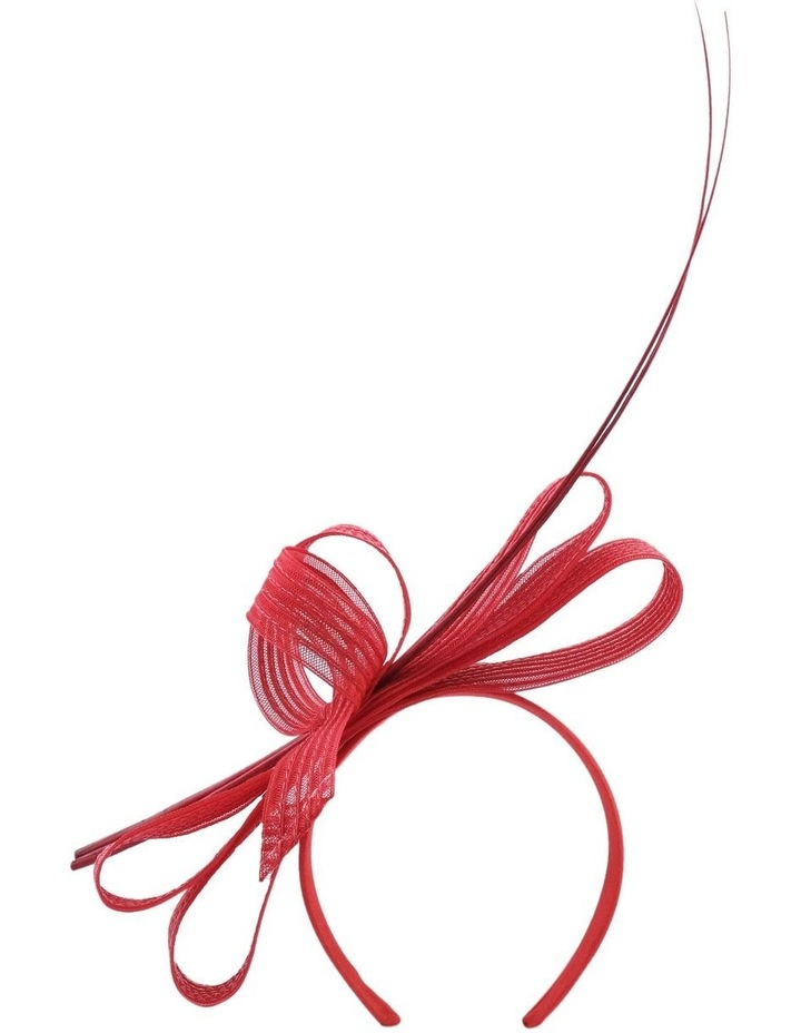 Braid Loops W Quill image 1