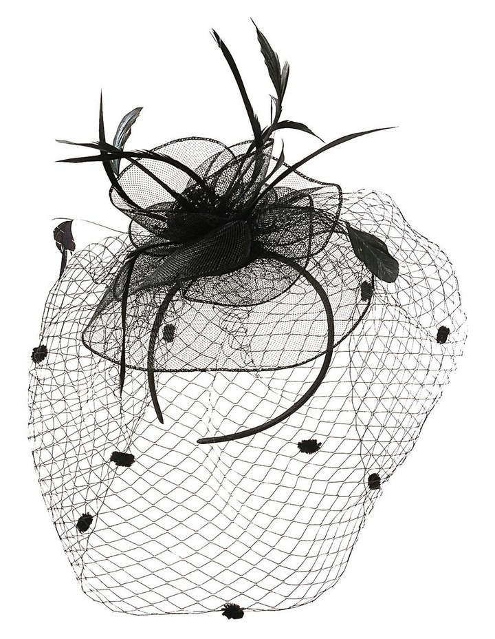 Crin Flower With Feathers And Spot Veil Fascinator image 1
