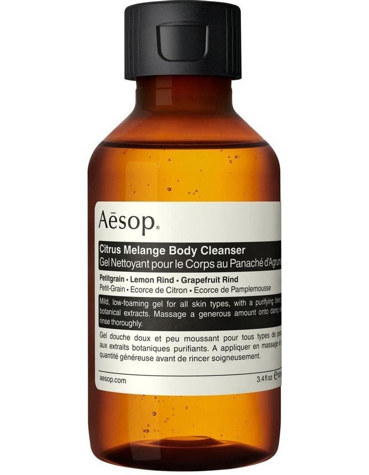 Citrus Melange Body Cleanser image 2