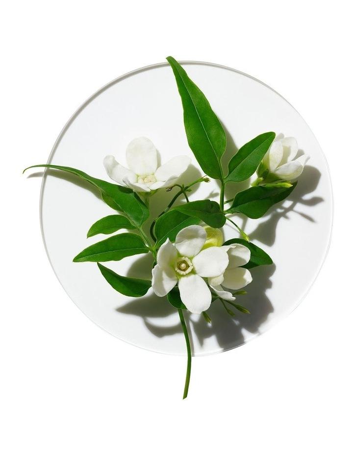 My Happy Peace & Jasmine image 2