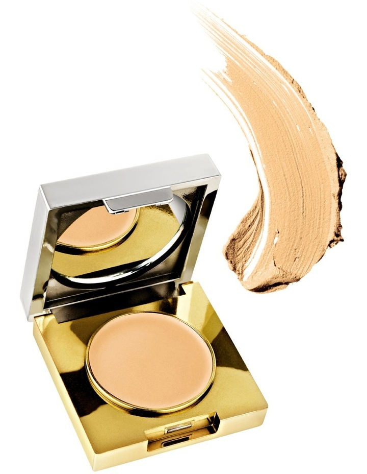 Flawless Finish Maximum Coverage Concealer image 1