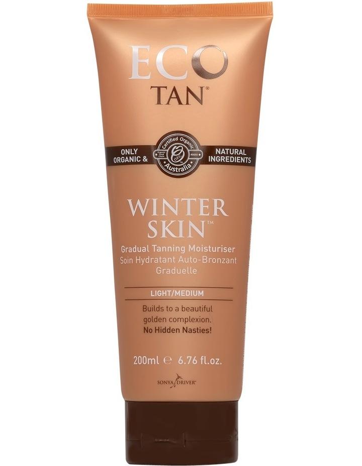 Winter Skin image 1