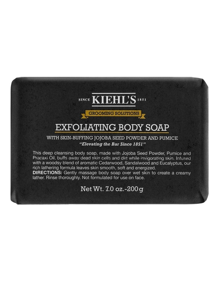 Men Grooming Solutions Exfoliating Body Soap image 1