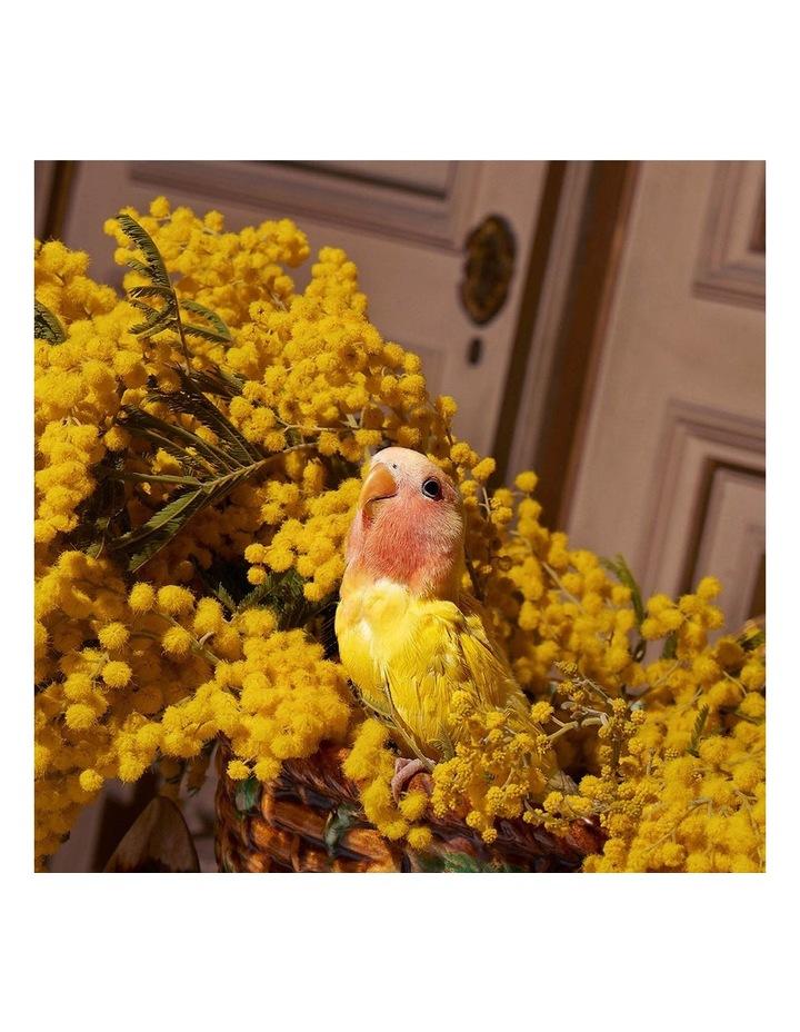 The Alchemist's Garden Winter's Spring  Eau de Parfum 100ml image 5