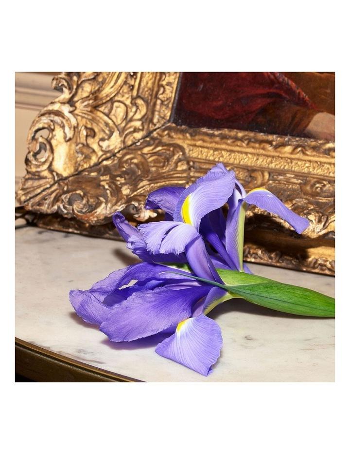 The Alchemist's Garden Tears of Iris Eau de Parfum 100ml image 5