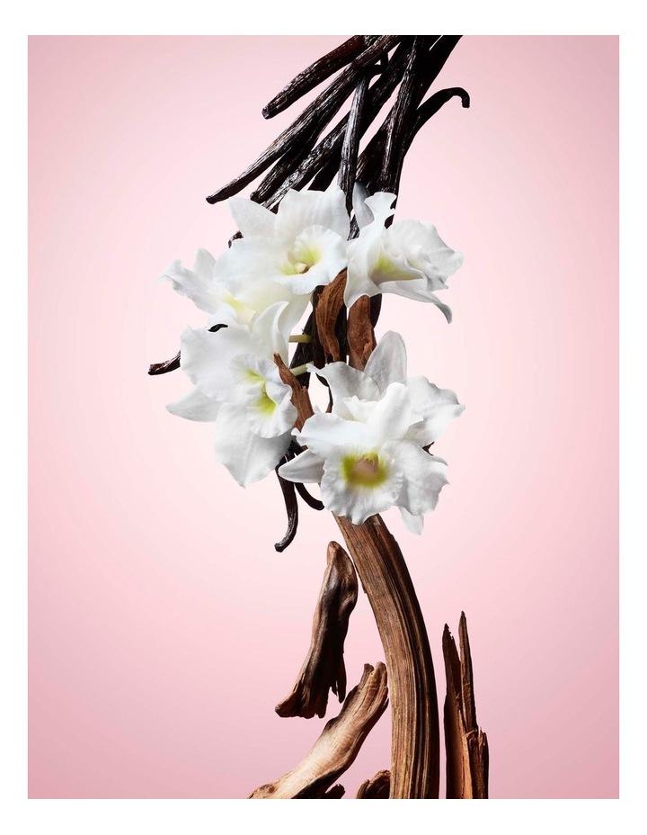 Flowerbomb Eau De Parfum 30ml Holiday Gift Set image 6