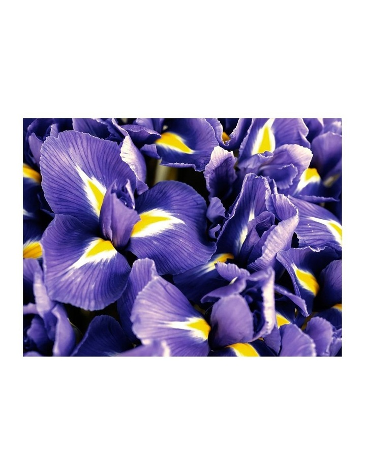 Polo Blue Eau De Parfum 125ml Holiday Gift Set image 6