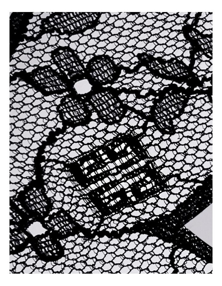Le Soin Noir Face Lace Mask image 6