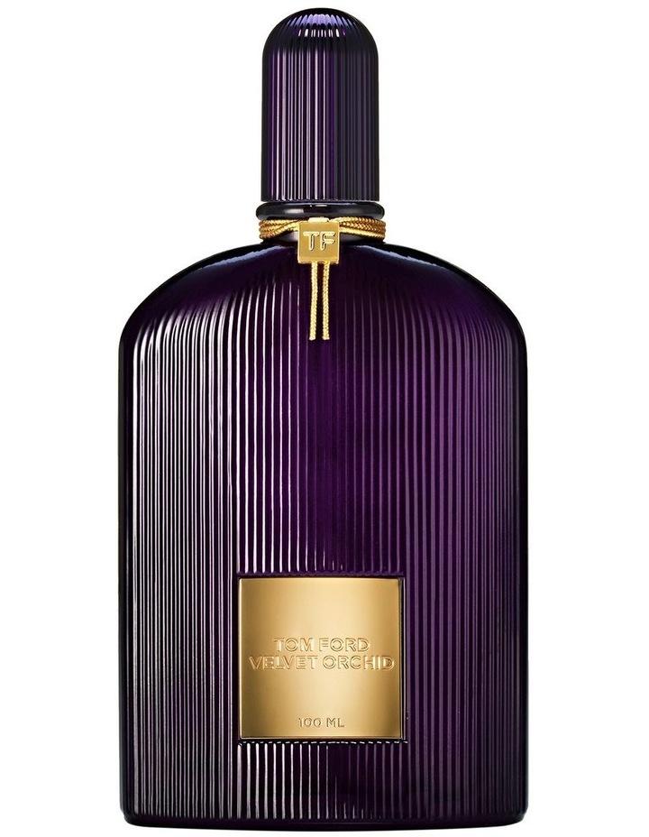 Velvet Orchid image 1