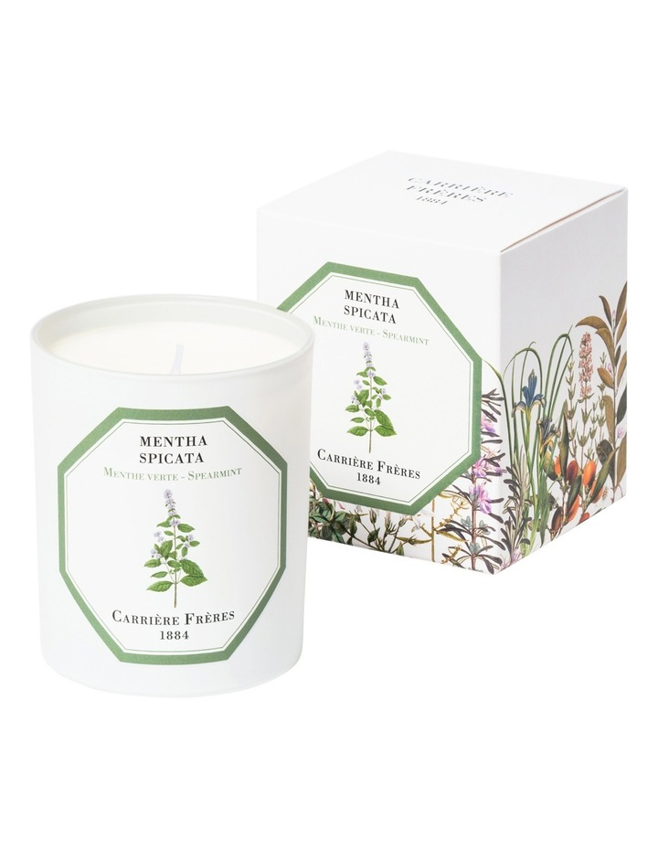 Spearmint Candle 185 G image 1