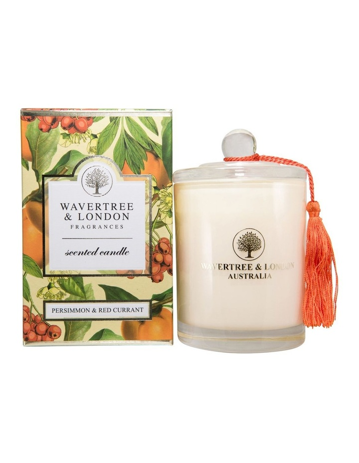 Persimmon and Red Currant Candle image 1
