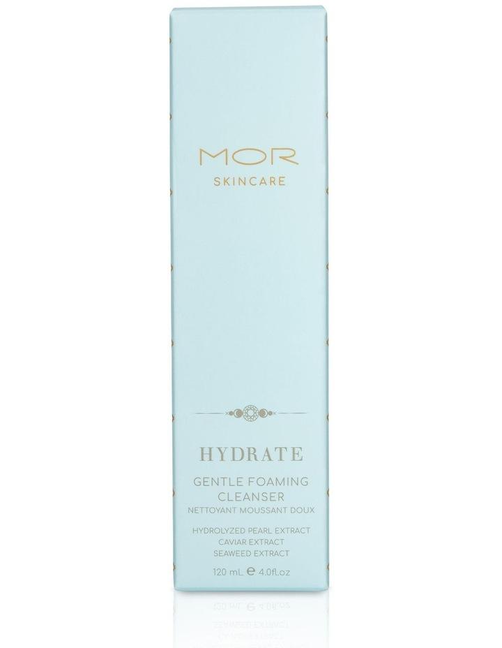 Hydrate Gentle Foam Cleanser 120ml image 3