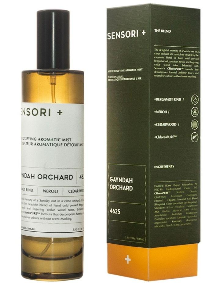 Air Detoxifying Aromatic Mist Gayndah Orchard image 2