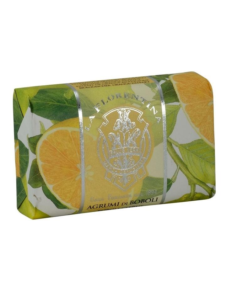 Wrapped Soap Agrumi di Boboli Citrus image 1