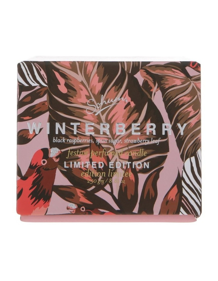 Winterberry Eco Candle image 1