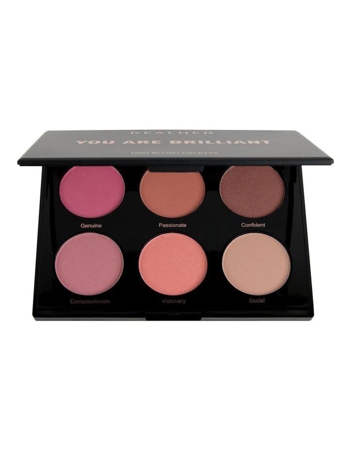 You Are Brilliant Pro Blush Palette image 1