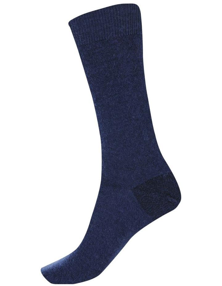 Alpaca Health Sock image 3