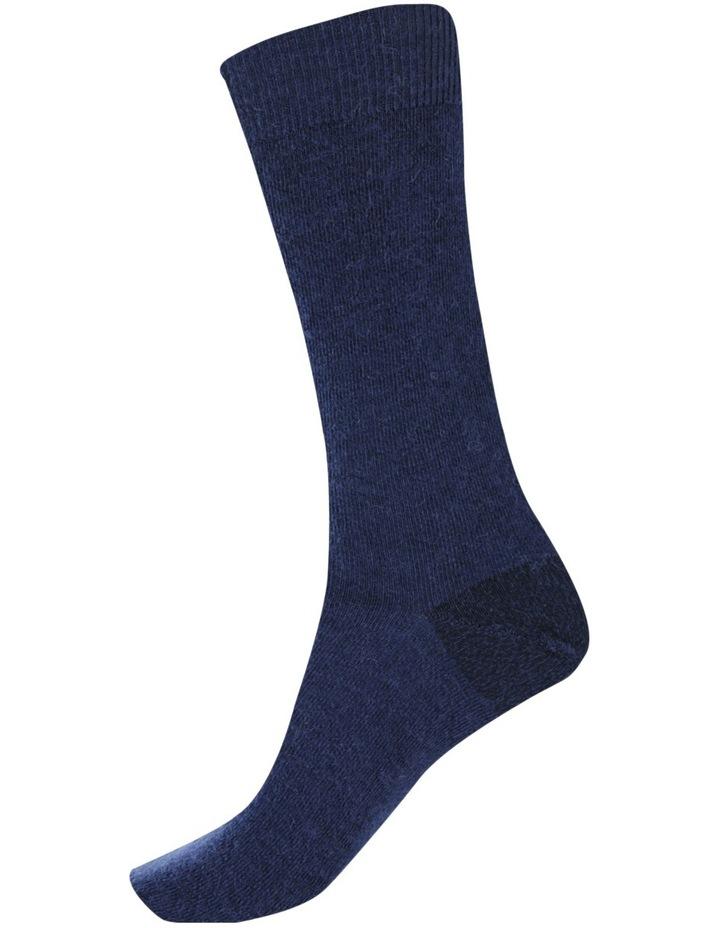 Alpaca Health Sock image 4