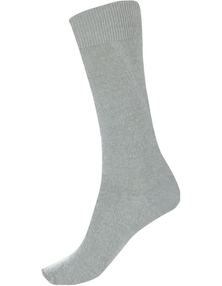Alpaca Health Sock 05C05 image 2