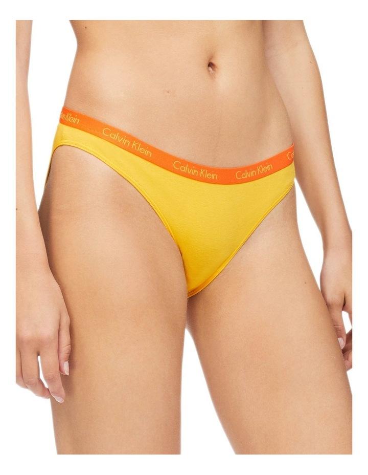 Brief Program Carousel Bikini Brief 5 Pack QD3586 image 4