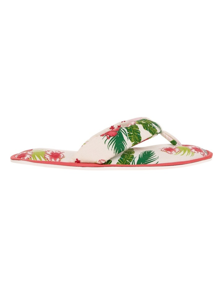 Away With You Slipper Thongs SCLS19082 image 1