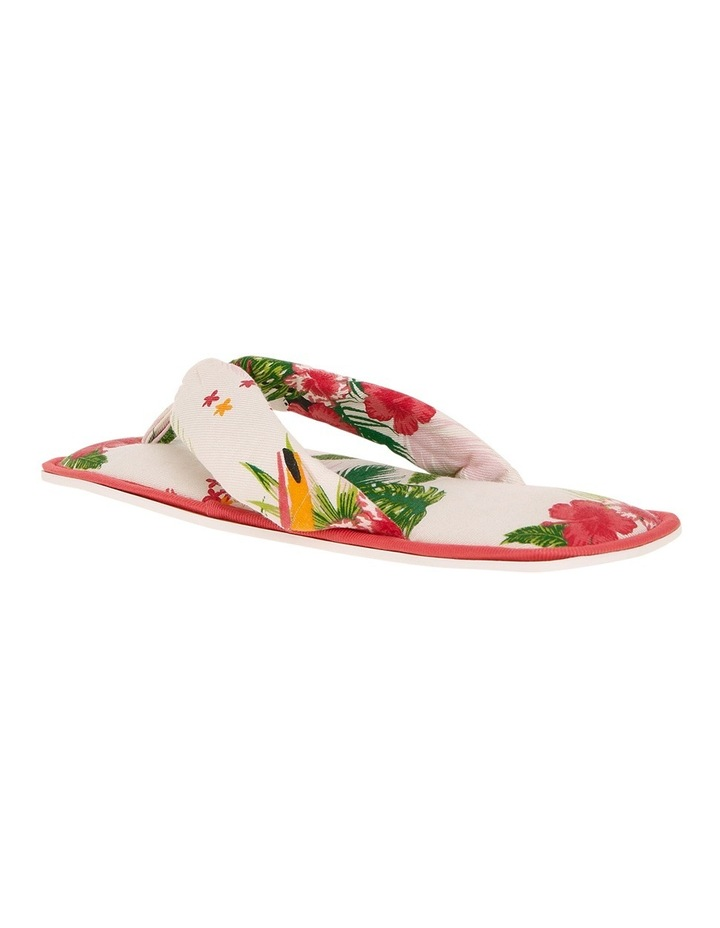 Away With You Slipper Thongs SCLS19082 image 2