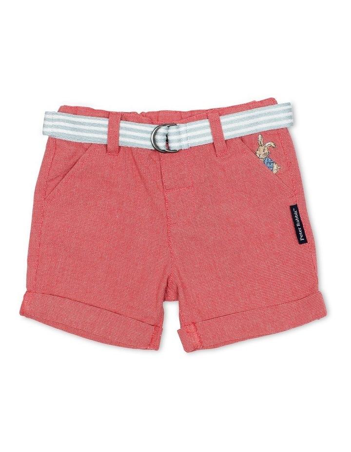 Shorts with Belt image 1