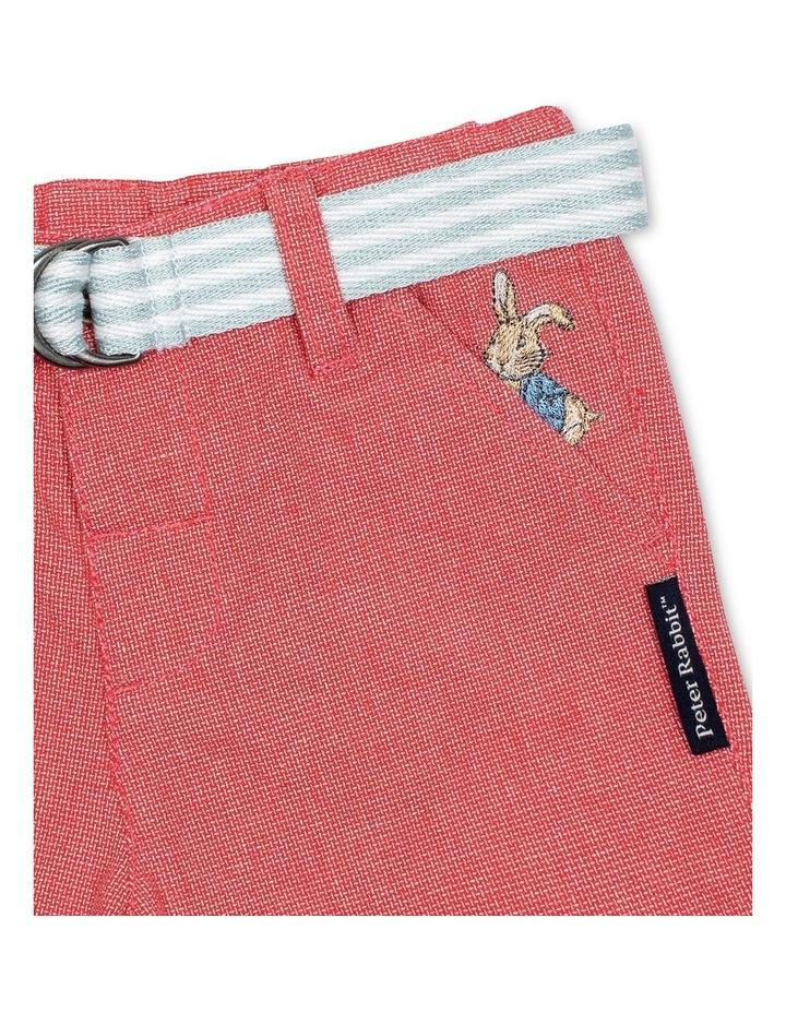 Shorts with Belt image 3