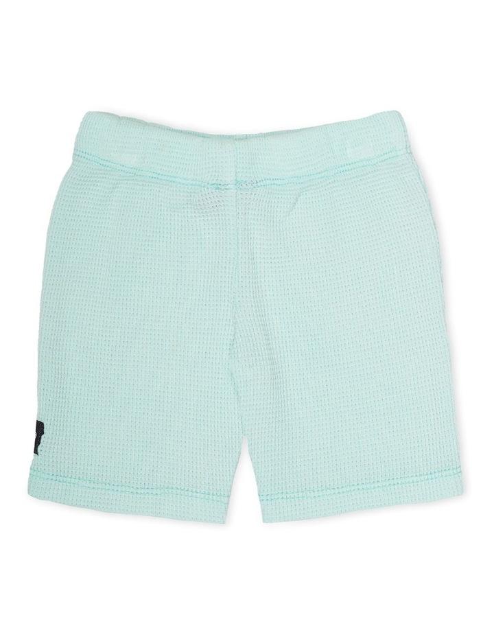 Frankie Shorts Mint image 2